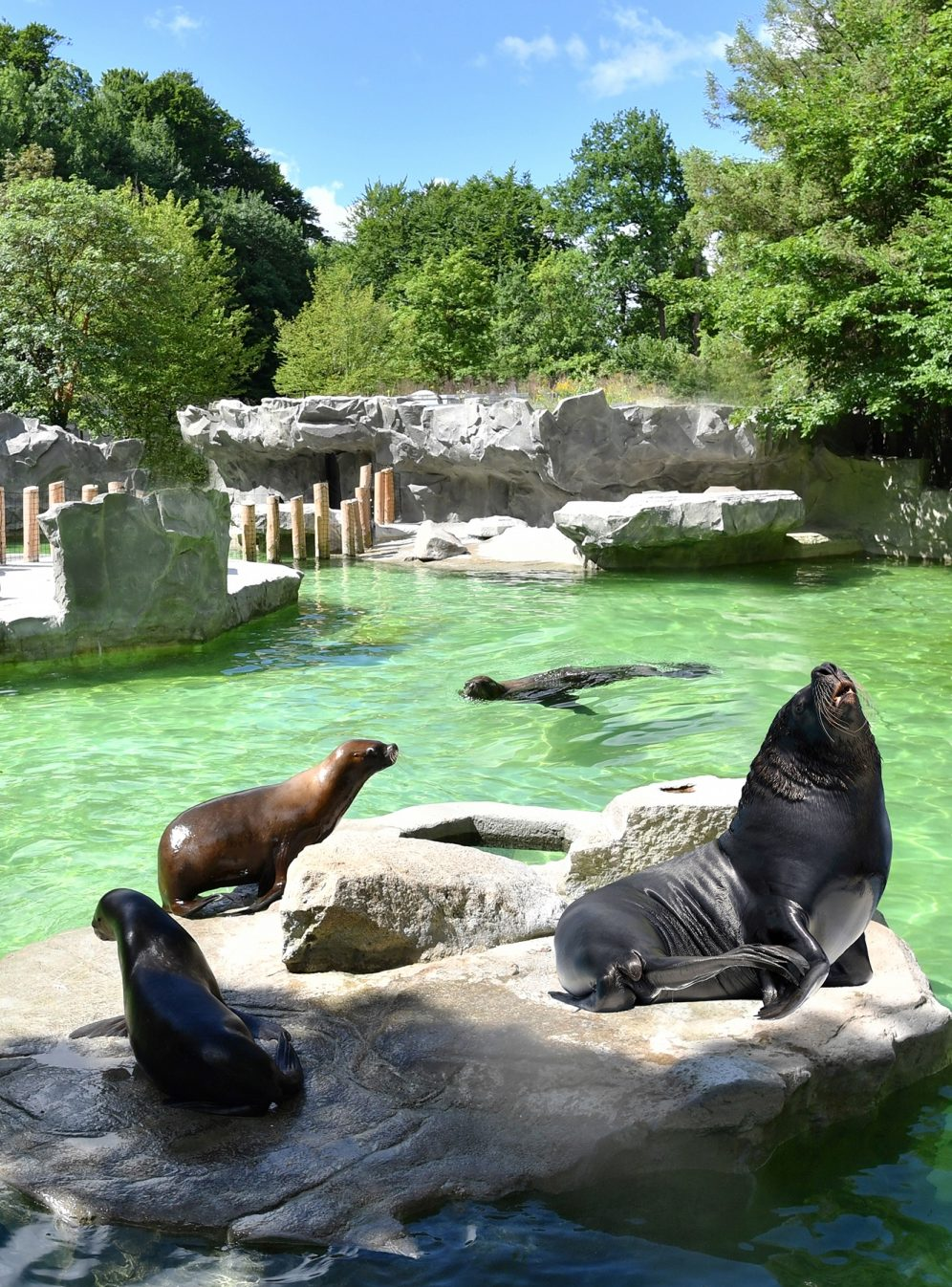LHOMES Geiselgasteig Tierpark